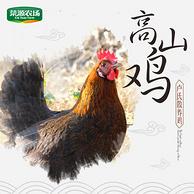 菜源农场 高山散养绿壳蛋土鸡 2.4-2.8斤