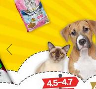 中亚 宠物用品店改版上线 满199-100元