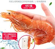 5点开抢!豪鲜惠进口阿根廷红虾2kg