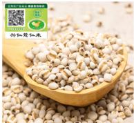 贵州原产地兴仁小薏仁米4斤