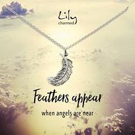Lily charmed 银色奇迹羽项链
