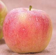 單果80-95mm,逗鮮 冰糖心紅富士蘋果 10斤