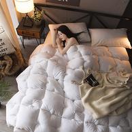 梦喜缘 羽丝绒 保暖被芯 220*240cm 6斤