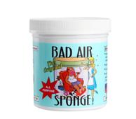 Bad Air Sponge 除甲醛空气净化剂- 14 盎司*2罐
