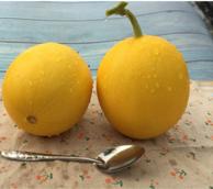 刺桐山 新鲜现摘新疆黄河蜜瓜哈密瓜 8斤