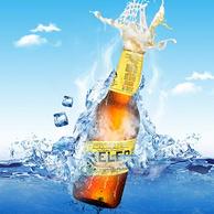 西班牙进口 KELER 开勒 拉格啤酒 250ml*12瓶*5件