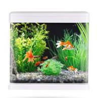 免换水!宁芯鲜 小型桌面生态创意鱼缸