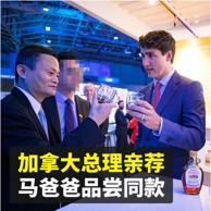 加拿大总理亲荐 PurNatur 加拿大进口枫叶糖浆1L
