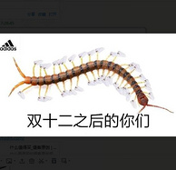 好货重新补货:京东双12 Adidas 再续神活动!
