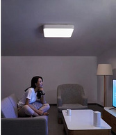 Yeelight 皓石智能 LED吸顶灯Plus
