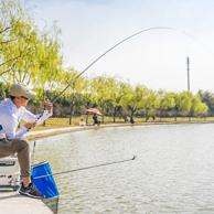 迪卡侬 鲤博 3.6米 高碳二八调 台钓竿