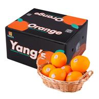 2件 杨氏 脐橙 10斤装 钻石果