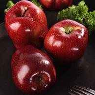 潘苹果 甘肃天水 花牛苹果5斤(12枚)