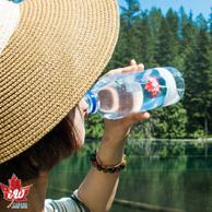 加拿大進口 iw Spring Water 天然飲用水500mlx24瓶