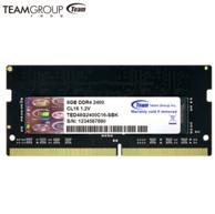 Team 十铨 DDR4 2400 8GB 笔记本内存条