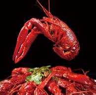 3件 今锦上 4-6钱 麻辣小龙虾3斤(净虾750g)