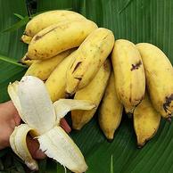 湾岛家 广西南宁 小米蕉9斤