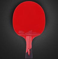15天免费试打,狄柏利 专业 六星级 乒乓球单拍