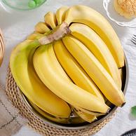柯蓝果蔬 云南新鲜香蕉 10斤