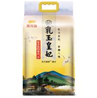 金龍魚 2019年新米 乳玉皇妃香貢米 5kgx2件
