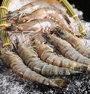 净重1600g 长13-15cm,厄瓜多尔进口 爱吃鱼 白虾