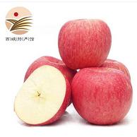 静益乐源 红富士苹果10斤