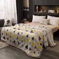 蘭序 拉舍爾雙層毛毯 150x200cm 4斤