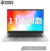 MECHREVO 机械革命 S1 Pro 14寸 笔记本电脑(i5-8265U、8G、1TB SSD、MX250 )
