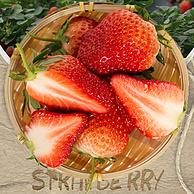 国家绿色食品认证:圣野果源 丹东99草莓 3斤