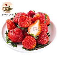 """PLUS会员:日本""""红颊草莓"""": 5斤 静益乐源 红颜草莓"""