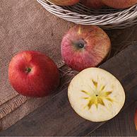果径85-90mm,红旗坡 新疆阿克苏苹果 净重5kgx2件