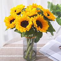 5只装:百永花坊 云南 向日葵鲜花