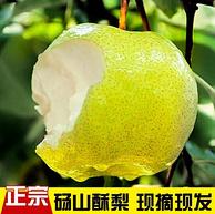 小神價 碭壹品 精選碭山酥梨 5斤x2件