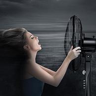 五片弦月扇叶,1级能效,58m³大风量:艾美特 落地电风扇 FSW65T2-5