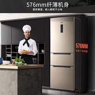 压缩机10年质保,奥马 三门冰箱 219升 BCD-219WDT/B