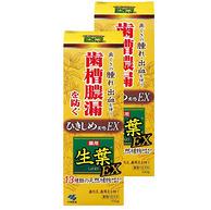 针对牙龈问题 KOBAYASHI 小林制药 生叶EX增强版中药牙膏 100gx2支