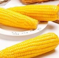 老农贡 正宗山西非转基因甜糯玉米棒10根 2200g 16.9元包邮