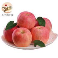PLUS会员神价格:苹果红了 红富士苹果 果径75-80mm