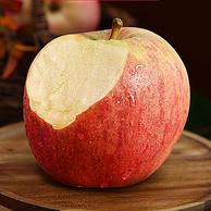 新低!北京奥运会食材供应商:5斤 绿行者 山东红富士苹果 80~85mm
