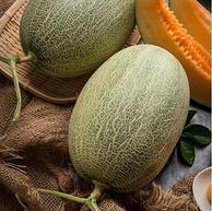 白菜价!单果1.25kg以上 京觅 西州蜜瓜哈密瓜 2粒装