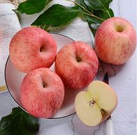 古寨山 烟台栖霞红富士苹果 80-85mm大果 5斤装