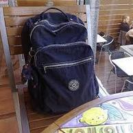 来自猩猩的你!Kipling 吉普林电脑休闲双肩背包 51.72美元约¥321(国内官网同款1190)