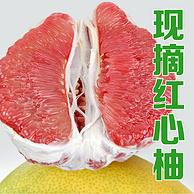 安农果园 福建平和琯溪 红肉蜜柚 5斤 18.9元包邮