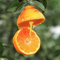 四川特产:益味鲜 不知火丑八怪柑橘 10元券后29.9元包邮