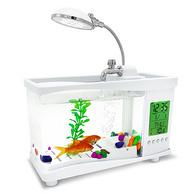 可放书桌,憨憨乐园  玻璃生态水族箱