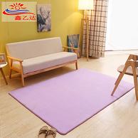 鑫乙达 家用简约地毯