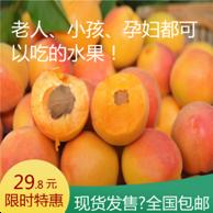 新鲜水果果园直发无农药大黄杏5斤 券后19.8元包邮