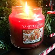 Prime会员:Yankee Candle 扬基蜡烛 瓶装无烟香薰 糖果味 623g