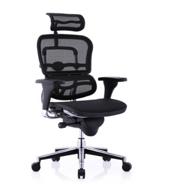 Ergonor 保友 人体工学电脑椅 黑色