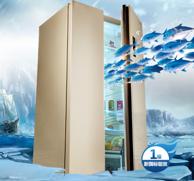 老牌美菱BCD-650WPCX  650L变频风冷 对开门冰箱